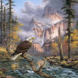 Пазл онлайн: Горный орёл