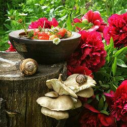 Пазл онлайн: В моем саду