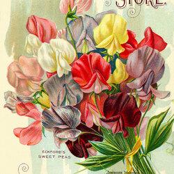 Пазл онлайн: Винтажные открытки