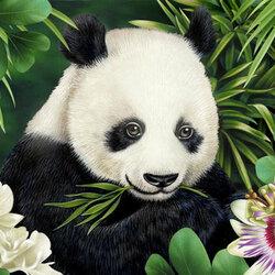 Пазл онлайн: Маленькая панда