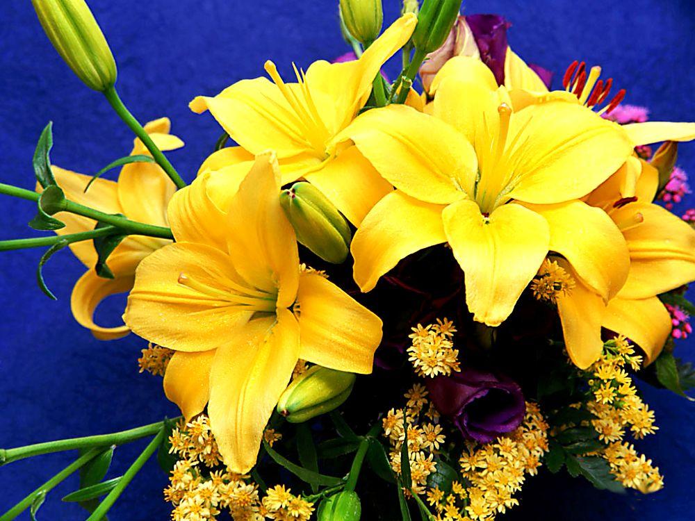 Бабушке год, открытки с желтыми лилиями
