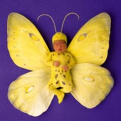 Пазл онлайн: Малыш-бабочка