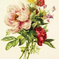 Пазл онлайн: Букет с пионами и другими цветами