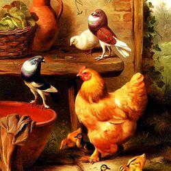 Пазл онлайн: A Chicken, Doves, Pigeons And Ducklings / Курица, голуби и утята