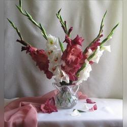 Пазл онлайн: Розовые и белые пики гладиолусов