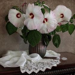 Пазл онлайн: Удивительные цветы