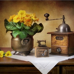 Пазл онлайн: Натюрморт с примулой и кофемолкой