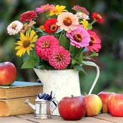 Пазл онлайн: Неприхотливые цветы