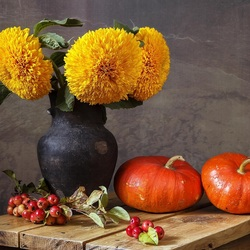 Пазл онлайн: Цветок, влюблённый в солнце