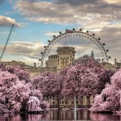 Пазл онлайн: Парк Лондона