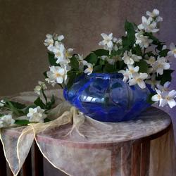 Пазл онлайн: Тонкий аромат жасмина