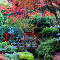 Пазл онлайн: Сады Бутчартов / Butchart Gardens