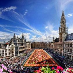 Пазл онлайн: Цветочный ковер. Брюссель