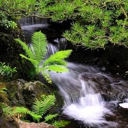 Пазл онлайн: Искусственный водопад