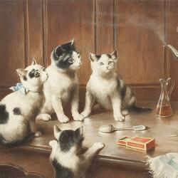 Пазл онлайн: Котята на столе