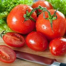 Пазл онлайн: Сочные спелые томаты