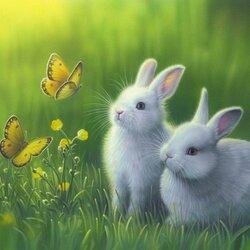 Пазл онлайн: Пушистые зайчата