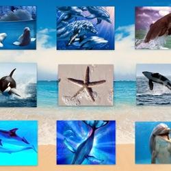Пазл онлайн: Обитатели моря