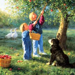 Пазл онлайн: Сбор урожая яблок