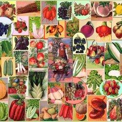 Пазл онлайн: Огородное ассорти