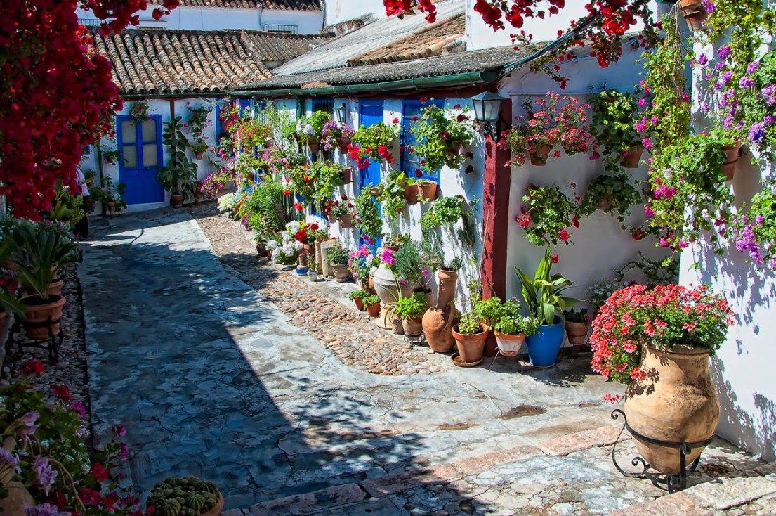 Фото двориков частных домов с цветами 5