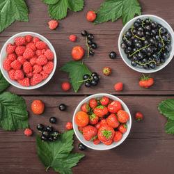 Пазл онлайн: Свежие ягоды