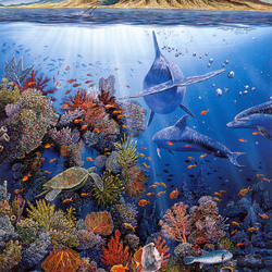 Пазл онлайн: Подводная жизнь