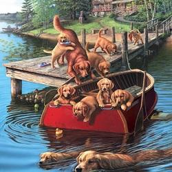 Пазл онлайн: Резвящиеся собаки