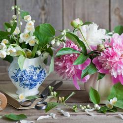 Пазл онлайн: Сладкий аромат цветов