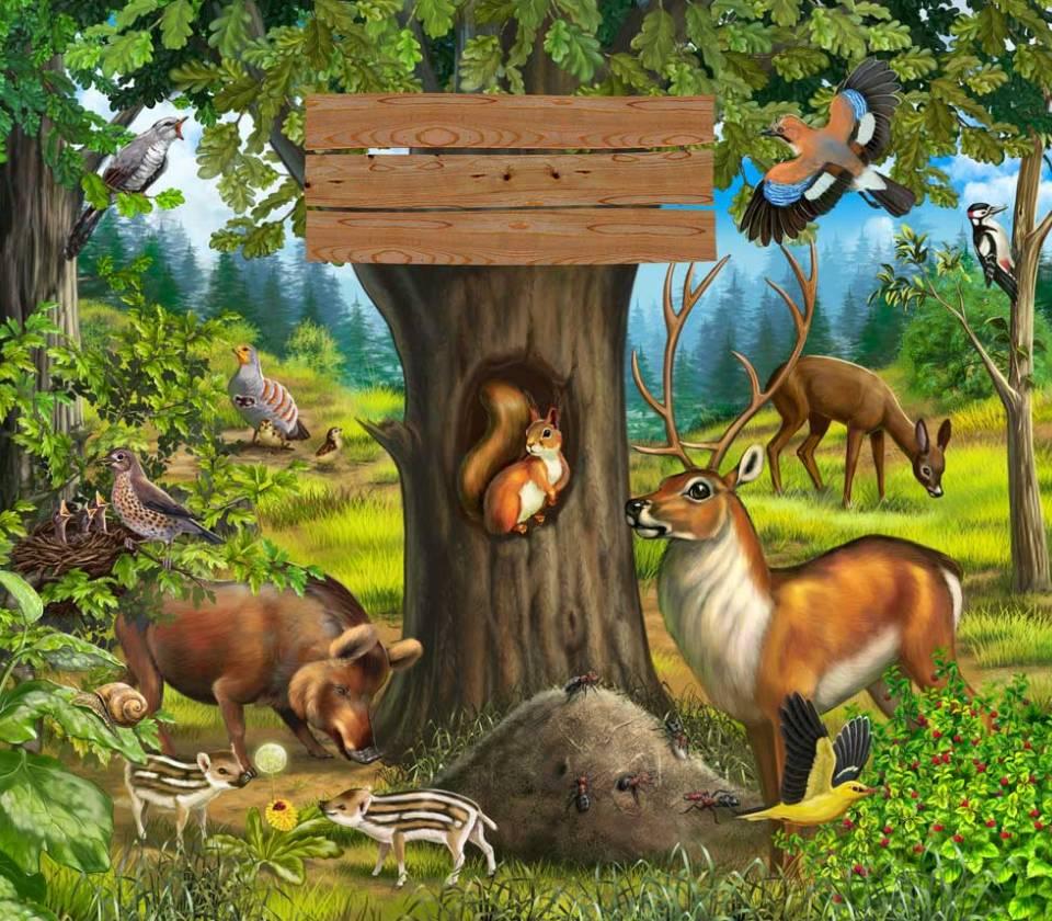 Открытки о лесе, медведь рисунок