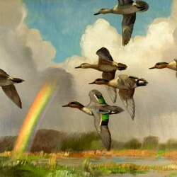 Пазл онлайн: Полет после дождя
