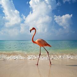Пазл онлайн: Гуляющий фламинго