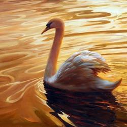 Пазл онлайн: Белый лебедь