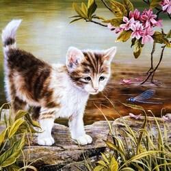 Пазл онлайн: Котенок и стрекоза