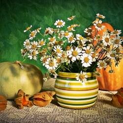 Пазл онлайн: Ромашки и тыквы