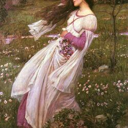 Пазл онлайн: Цветы ветра