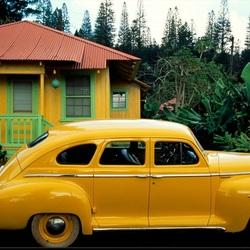 Пазл онлайн: Жизнь в цвете: желтый