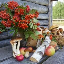 Пазл онлайн: Щедрая осень