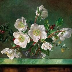 Пазл онлайн: Рождественская роза