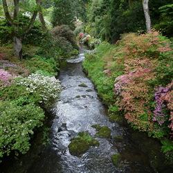 Пазл онлайн: Уголок сада Боднант (Bodnant Gardens)