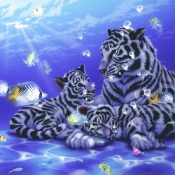 Пазл онлайн: Подводная семья
