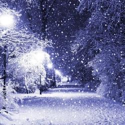 Пазл онлайн: Снегопад