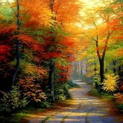 Пазл онлайн: Осенний ноктюрн