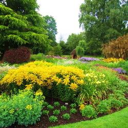 Пазл онлайн: Сады Брессингхем (The Bressingham Gardens)