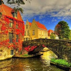 Пазл онлайн: Осень в городе. Бельгия