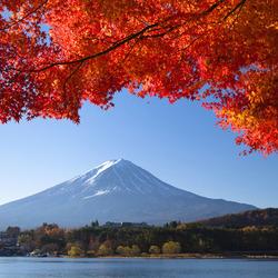 Пазл онлайн: Фудзияма осенью