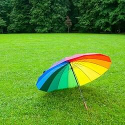Пазл онлайн: Радужный зонт