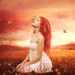 Пазл онлайн: Поцелуй бабочки