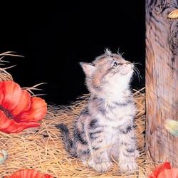Пазл онлайн: Котёнок на сеновале