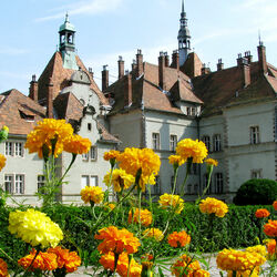 Пазл онлайн: Замок Шенборна. Украина
